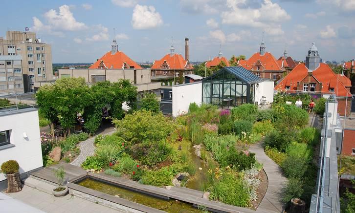 Beispiel für Gartendach