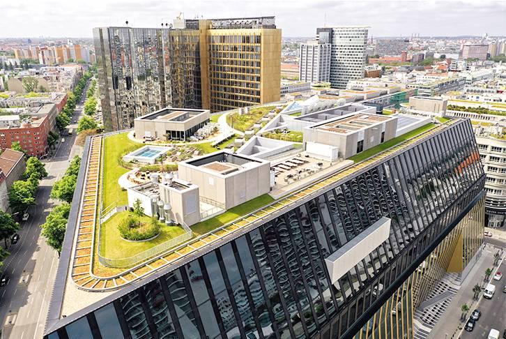 Dachbegrünung Bürogebäude Berlin, 2020