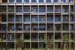 Muenchen Deutscher Alpenverein Fassadenbegruenung