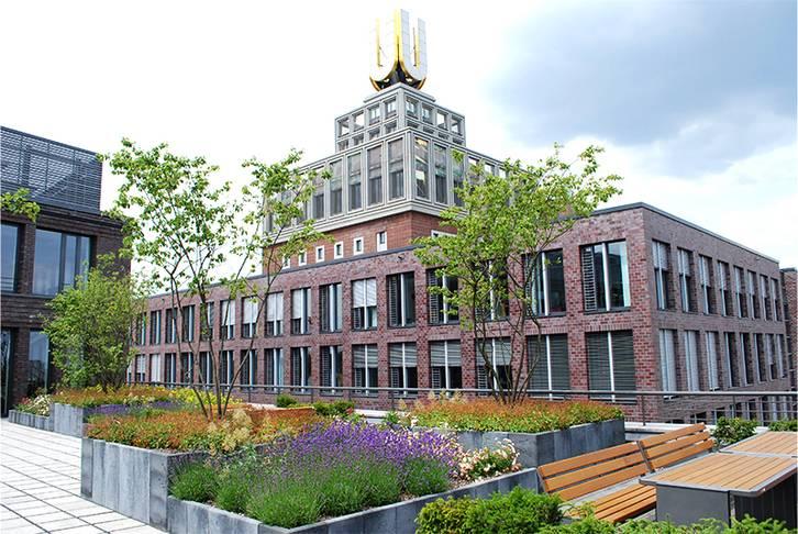 Dachbegrünung Bürogebäude Dortmund, 2010