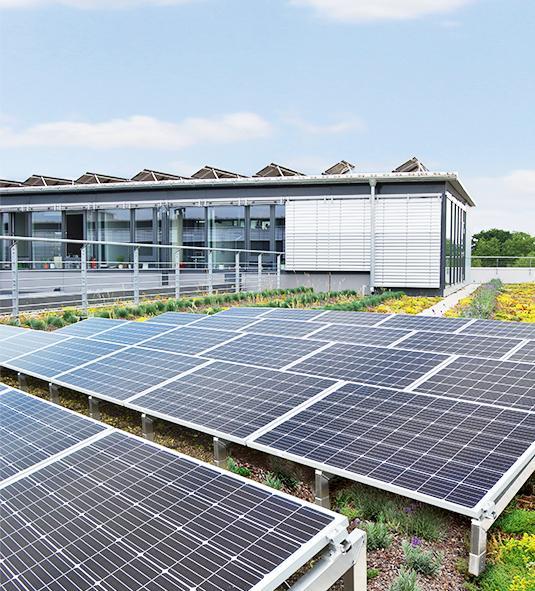 OPTIGRÜN-Solar FKD